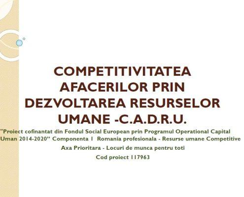 COMPETITIVITATEA AFACERILOR PRIN DEZVOLTAREA RESURSEI UMANE C.A.D.R.U